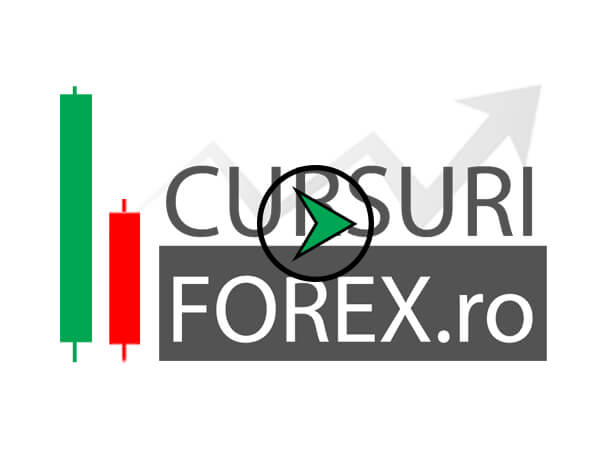 Curs forex in timp real