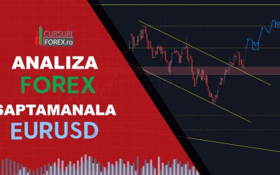 Forex | Curs forex | Ce este forex | Forex trading