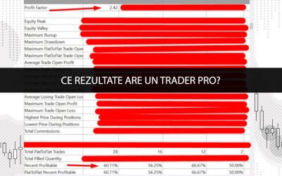 Ce rezultate are un Trader Pro?